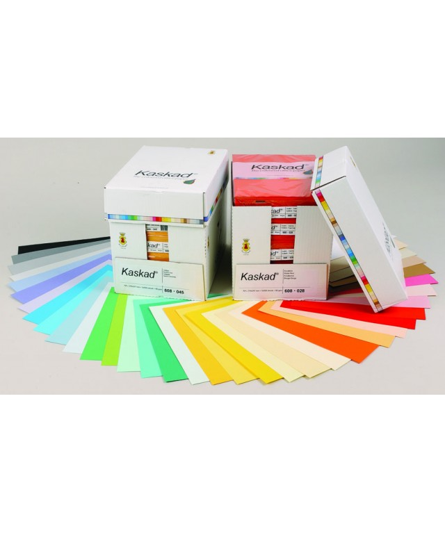 A4 Coloured Copier Card 160gsm - Assorted Brights